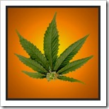 pot-leaf